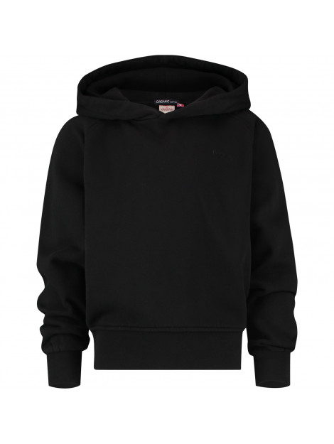 Vingino Basic hoodie NOESKGN34601 large