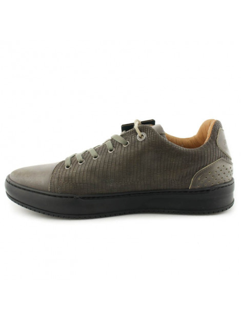 Rehab Sneakers Toms || Lizrd large
