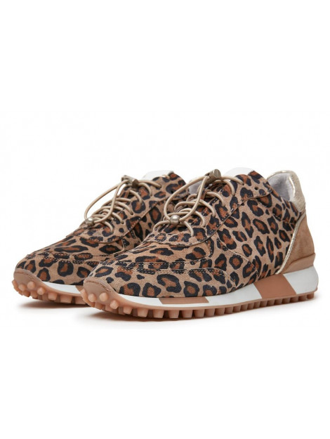 Via Vai Artikelnummer 5107076 sneaker leopard print 5107076 large