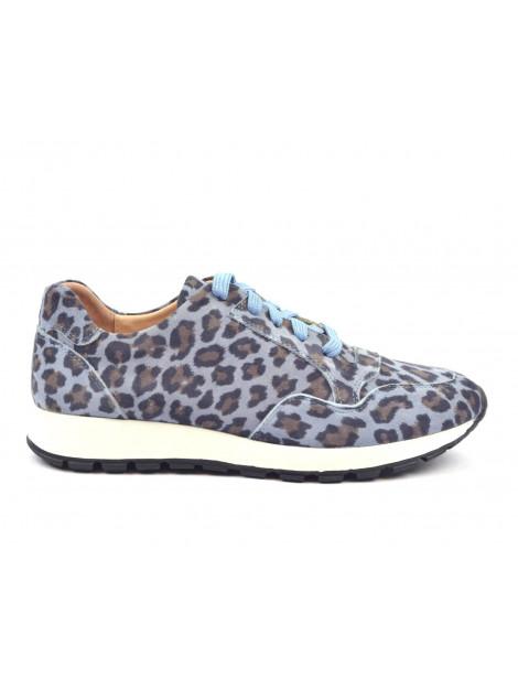 Rapid Soul Sneakers blauw   Harva2 Blue Leopard   large