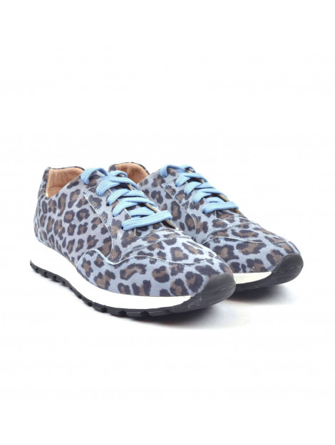 Rapid Soul Sneakers blauw  						 Harva2 Blue Leopard  					 large