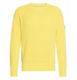 Calvin Klein Pullover j30j314927 geel
