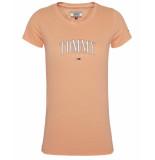 Tommy Hilfiger T-shirt dw0dw08061 roze
