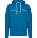 Tommy Hilfiger Tommy logo hoody mw0mw11599/c22
