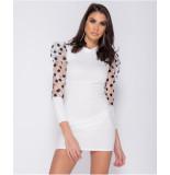 Parisian Sheer polka dot organza sleeve bodycon mini dress