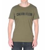 Calvin Klein Big logo name groen