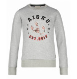 AI&KO Aaiko sweaters blizz co 280 grijs