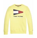 Tommy Hilfiger Sweatshirt kb0kb05650