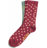 King Louie Socks 2 pack orbit cherise