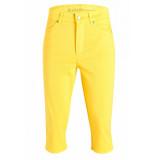 Rosner Audrey5 004 1202 geel