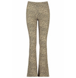 CoolCat Flared pants philou cg