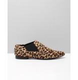 Scavesti 1711 leopard