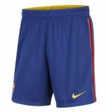Nike Fc barcelona thuisbroekje 2020-2021 kids