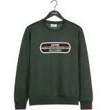 Antwrp Brushed sweater velo green