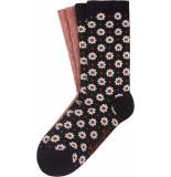 King Louie 2 pack socks tate black