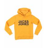 Jack & Jones Sweatshirt 12176865 jcorad