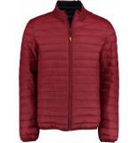 Bos Bright Blue Puff jacket 20301ja03bo/677 wine red