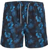 Jack & Jones Aruba jjswimshorts