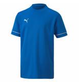 Puma Teamgoal trg jersey core j