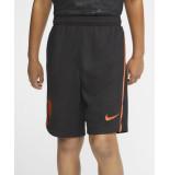 Nike Nederland Stadium Uit shorts