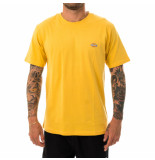 Dickies T-shirt uomo stockdale dk621578apr