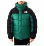 The North Face Giubbotto uomo m hmlyn down parka nf0a4qyxnl1