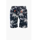 Common Heroes Navy sweat short palmtree voor jongens in de kleur