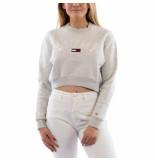 Tommy Hilfiger Tjw crop college logo sweatshirt