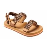Reef Slipper little ahi convertible leopard