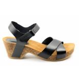 Casarini 19050. sandaal