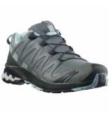 Salomon shoes xa pro 3d v8 gtx w gr/green gables -