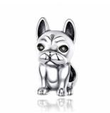 Mijn bedels Bedel leuke franse bulldog
