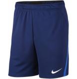 Nike dri-fit men's training shorts -