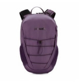 Pacsafe Rugzak venturesafe x12 backpack plum