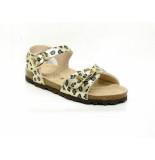 EB Shoes 0102