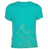 Icebreaker Groen tech t lite scatter tropic t-shirt
