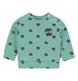 Noppies Sweater pascoe aop groen