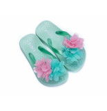 Zebra Slipper flower mint groen