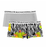Muchachomalo Ladies 2-pack short zebra