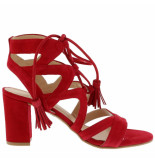 Collection by Marjon Sandalen cw2-beyonce rood