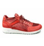 Cetti C1156 sneaker rood