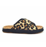 Scotch & Soda Slippers