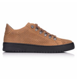 Hinson Bennet dragon low bs brown bruin