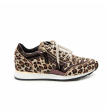 DL Sport 4045 703 sneakers bruin