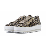 Gabor 26.498 leopard