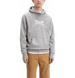 Levi's Graphic hoodie grijs