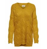 Only Onlhavana l/s v-neck pullover geel