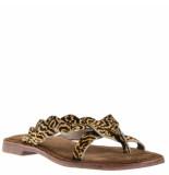 Lazamani Dames slipper