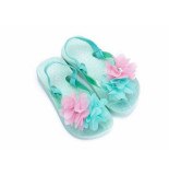 Zebra Slipper flower mini mint groen