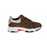 HIP H1748 sneakers panterprint bruin